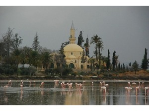Larnaca-Hala-Sultan-Tekke-mosque-with-Flamingos