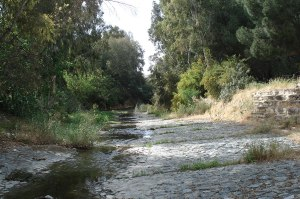 Pedieos-river-trail-Nicosia