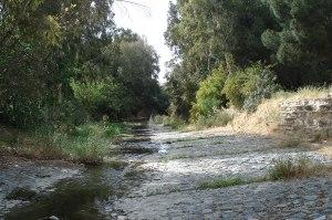 Pedieos-river-trail-Nicosia