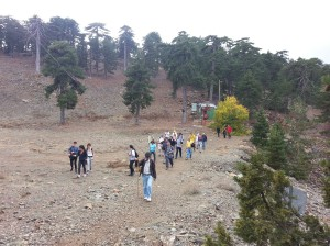 Troodos-Artemis-Group_2
