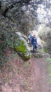 Madari-Teisia-trail