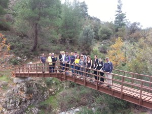 Mahairas-Pedieos-gorge-bridge
