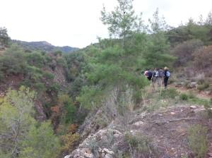 Mahairas-Pedieos-Gorge1