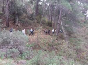 Mahairas-Pedieos-Gorge2