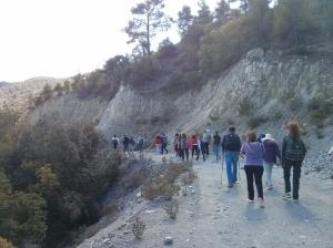 Kakopetria-Platania2