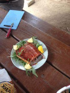 Salmon-fished-by-Ian-Alaska