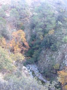 Pedieos-gorge
