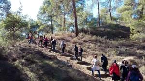 15-12-06-CY-Stroll-AdelphiForest-Asinou017