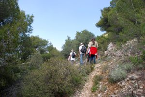 Hikers-back-view-countryside