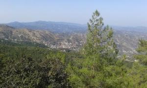 view-pedoulas