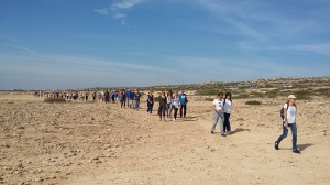 walk-leader-and-very-long-line-strollers