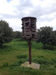 pigeon nest boxes/pezounarko